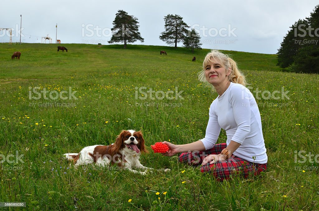Cavalier King Charles Spaniel Dog and Woman in the Countryside stock photo