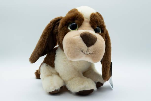 Cavalier soft toy dog picture id1077213382?b=1&k=6&m=1077213382&s=612x612&w=0&h=lt2wazskhxutvae3nixdb4joo2voc6abaif6b3mkt e=