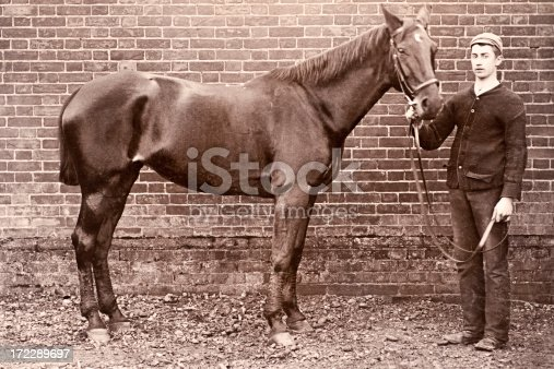 Vintage photograph of a Victorian British soldier and his horse.