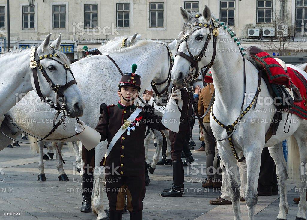Cavalry Regiment with Lusitano White Horses stock photo