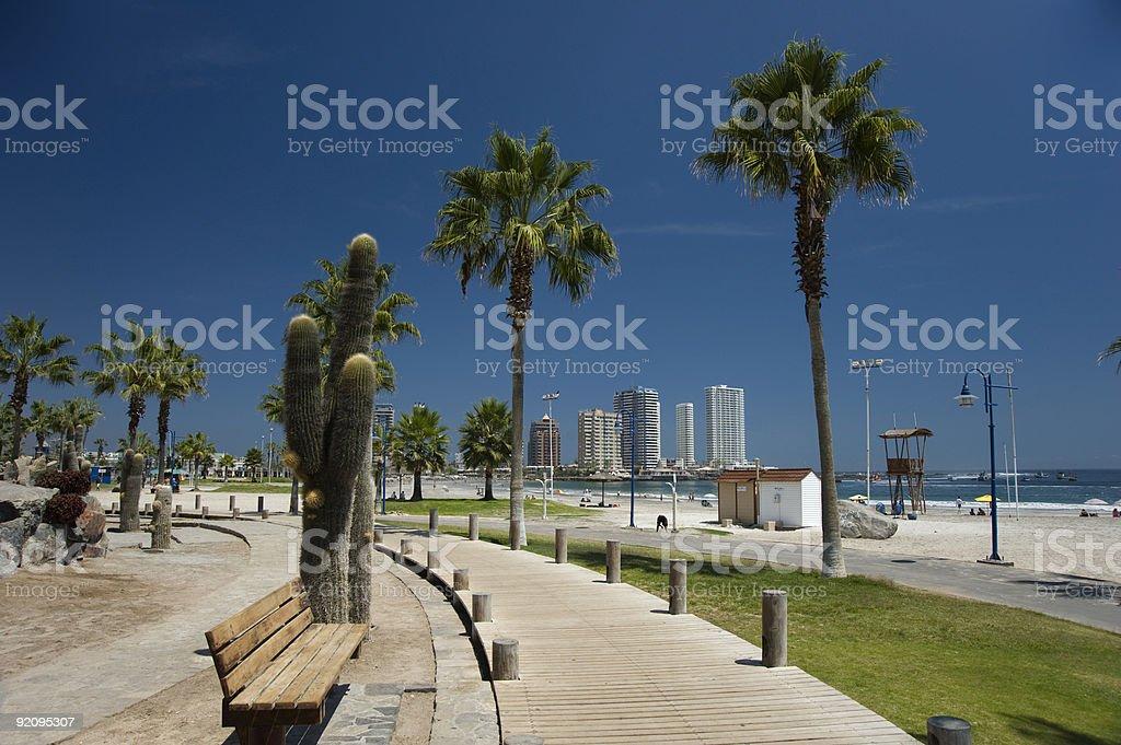 Cavancha Beach, Iquique, Chile stock photo