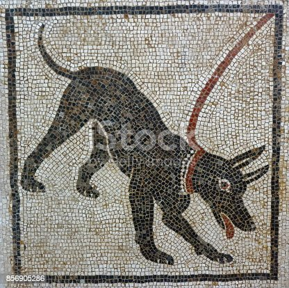 istock Cave Canem mosaic, Pompeii 856905286