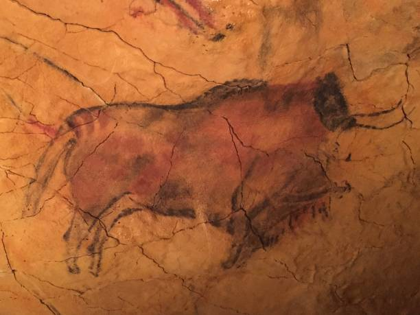 Cave painting mural in northern Spain Cave painting mural in northern Spain santander spain stock pictures, royalty-free photos & images