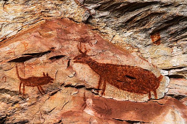 cave painting - mağara resmi stok fotoğraflar ve resimler