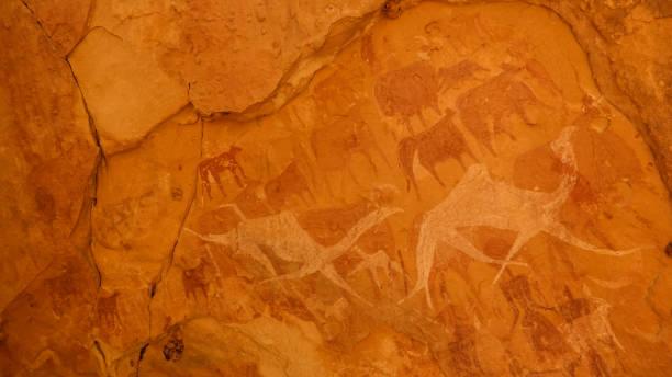 mağara resimleri ve bichagara mağara deve, inek, ennedi, chad petroglifler - mağara resmi stok fotoğraflar ve resimler