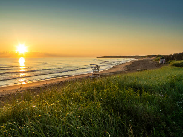 cavendish beach in prince edward island - prince edward island stock photos and pictures