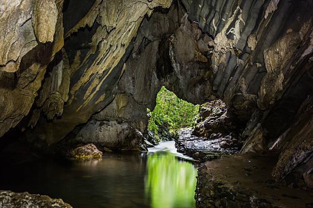 caverna - wasserfledermaus stock-fotos und bilder