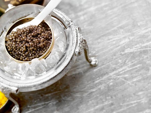 caviar sobre hielo - caviar fotografías e imágenes de stock