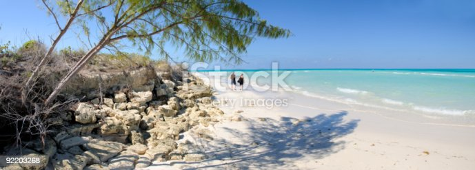 Panoramic view of tropical beach with vegetation in cayo guillermo, cuba