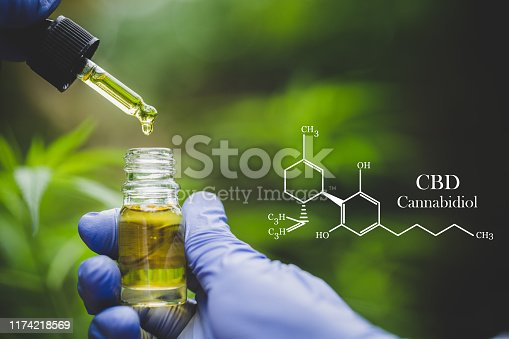 istock cbd hemp oil, formula CBD cannabidiol, doctor hand hold and offer to patient medical marijuana and oil., legal light drugs prescribe, alternative remedy or medication,medicine concept 1174218569