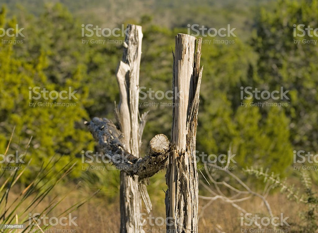 Picture of: Cedar Fence Post Stock Photo Download Image Now Istock