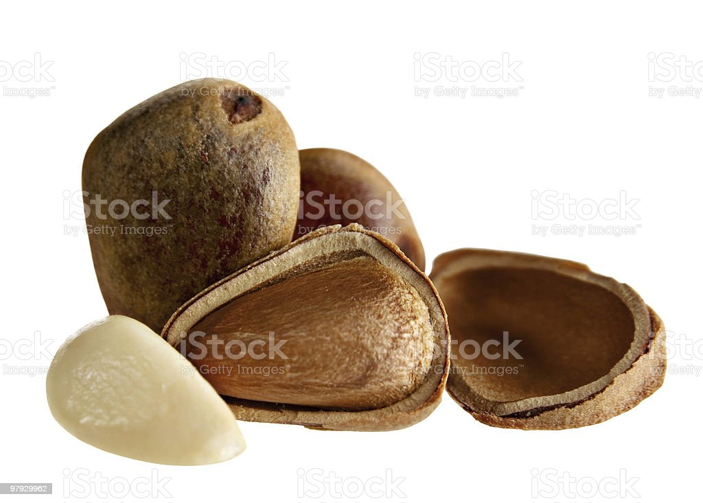 Cedar nut royalty-free stock photo