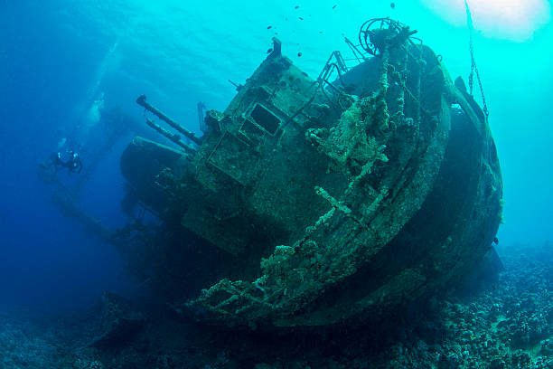 cedar pride wreck - shipwreck stock pictures, royalty-free photos & images