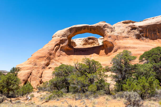 Cedar Tree Arch at Rattlesnake Canyon in McInnis Canyons National Conservation Area, Colorado State, USA stock photo