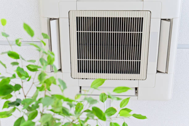 Ceiling air conditioner in modern office or at home with green ficus leaves Ceiling air conditioner in modern office or at home with green ficus plant leaves an idea of clean air. Indoor air quality concept wind stock pictures, royalty-free photos & images
