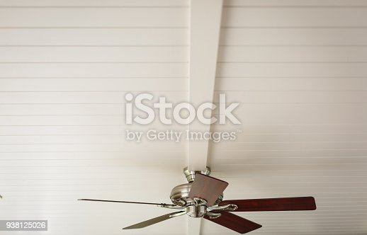 Ceiling Fan in black and white tone