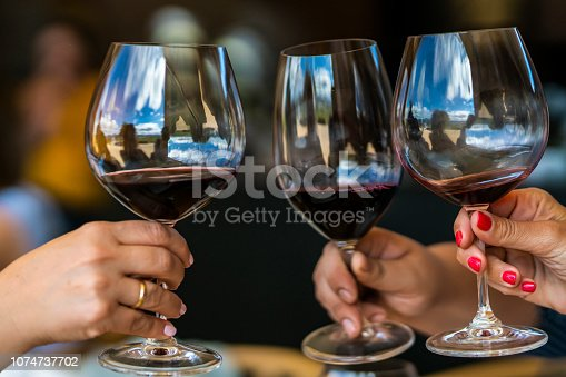 istock Celebrating Christmas days toasting wine glasses during a celebration day at our vacations during lunch time in a vineyard at Casablanca, Chile 1074737702