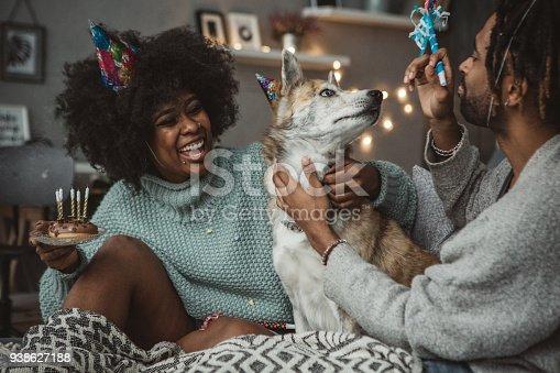 istock Celebrating dog birthday 938627188