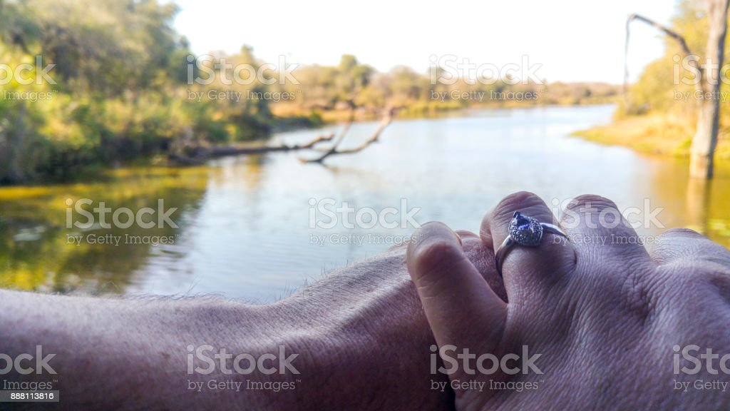 Celebrating engagement at waterside, Kruger National Park, South Africa stock photo