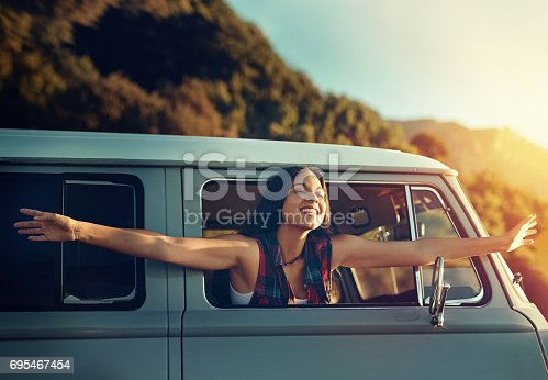 istock Celebrating summer with a road trip 695467454