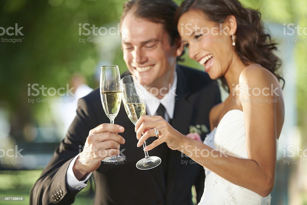 Celebrating their nuptials royalty-free stock photo