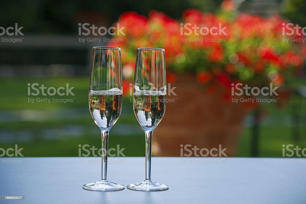Celebration in the garden royalty-free stock photo