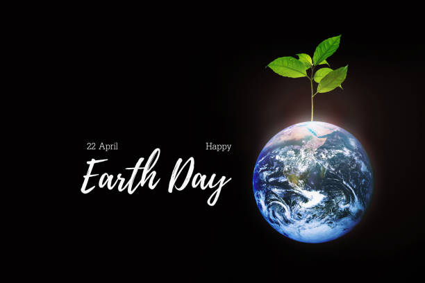 celebration of earth day on 22 april of every year with symbol of earth and growth of small freshness and strong tree on black background. - earth day stock pictures, royalty-free photos & images