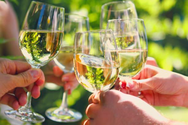 Celebración. Gente sosteniendo copas de vino blanco haciendo un brindis. - foto de stock