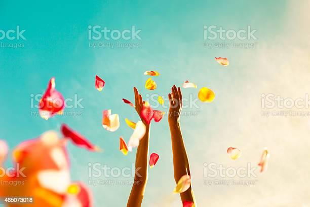 Celebration picture id465073018?b=1&k=6&m=465073018&s=612x612&h=v7dtmks6ld6m5 9khiuw2d3nazhczyp2yntvfodwskg=