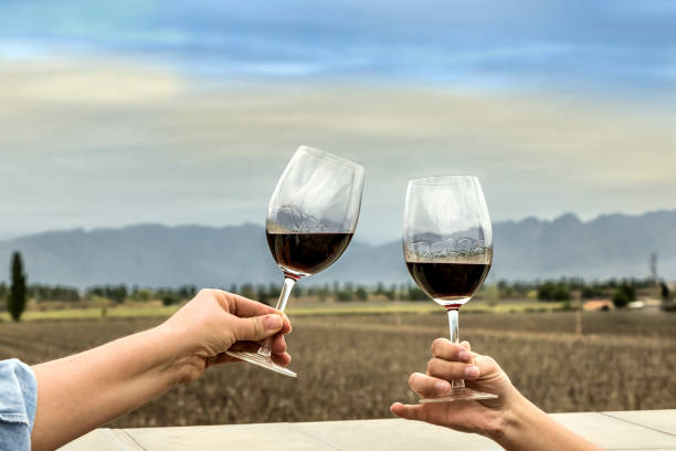 Celebration with red wine stock photo