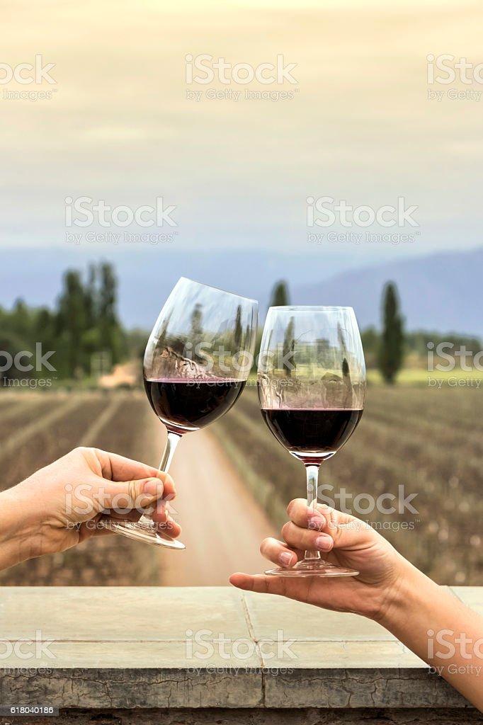 Celebration with wine stock photo
