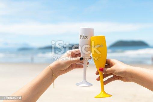 873333520 istock photo Celebratory Toast at the Beach 1066596928