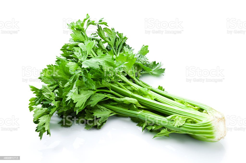 Celery bunch isolated on white background stock photo