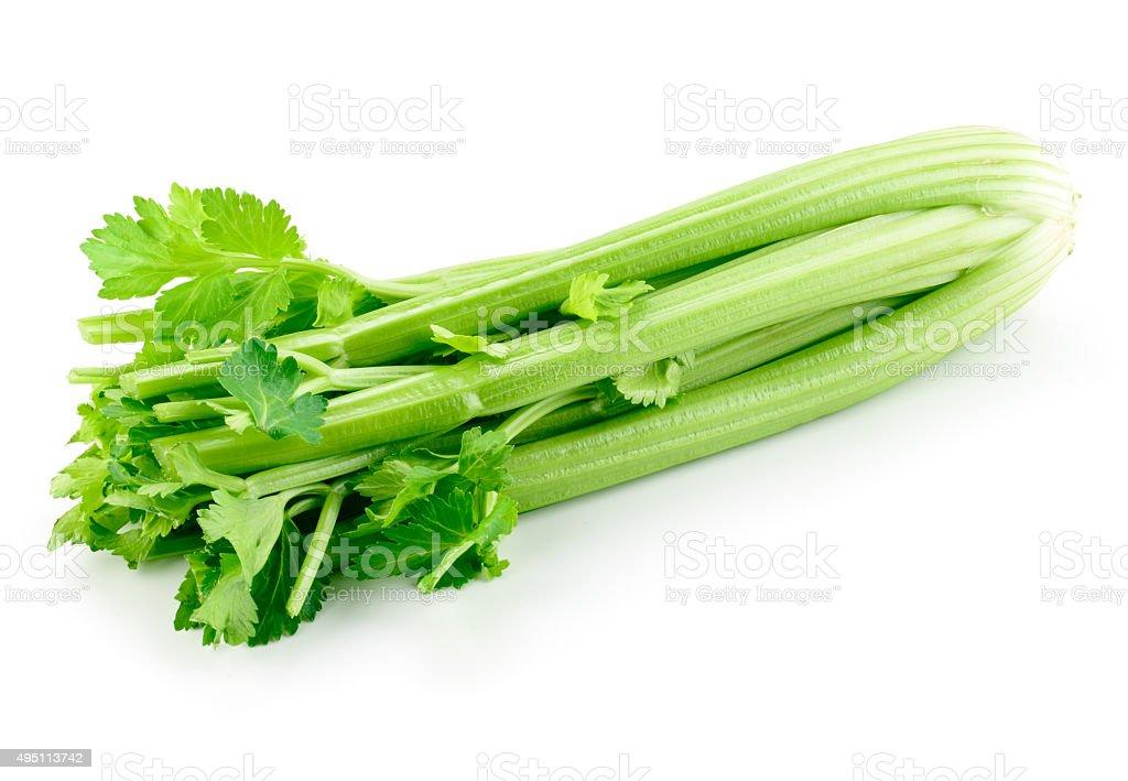 Celery isolated on white background stock photo