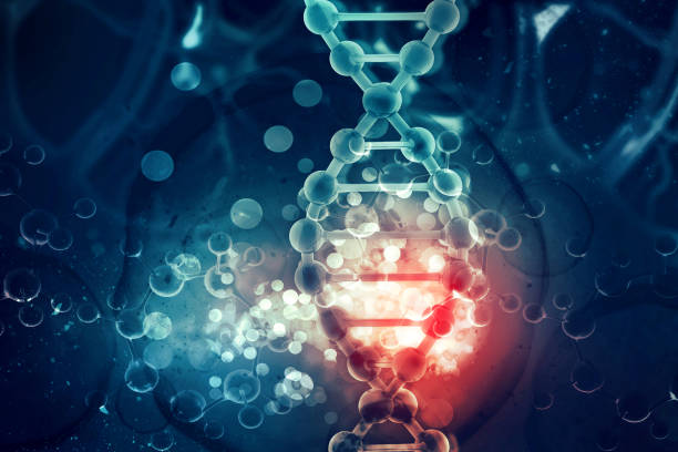 DNA cell on scientific background DNA cell on scientific background plant cell stock pictures, royalty-free photos & images