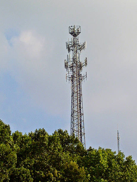 Cell Phone Tower, Standing Above Trees stock photo