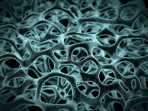 Cell Structure stock photo