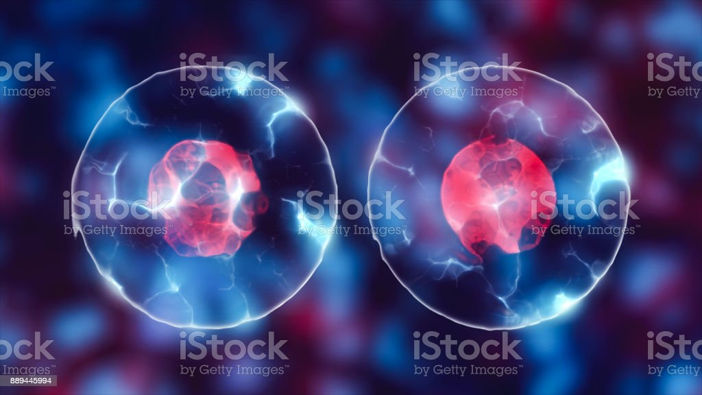 Cell with nucleus stock photo