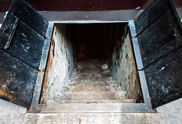 Cellar Access Cellar Stairway in a New York City Street with metal doors. cellar stock pictures, royalty-free photos & images