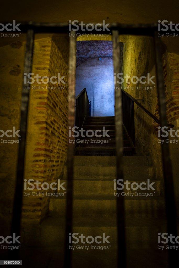 Cellar stock photo
