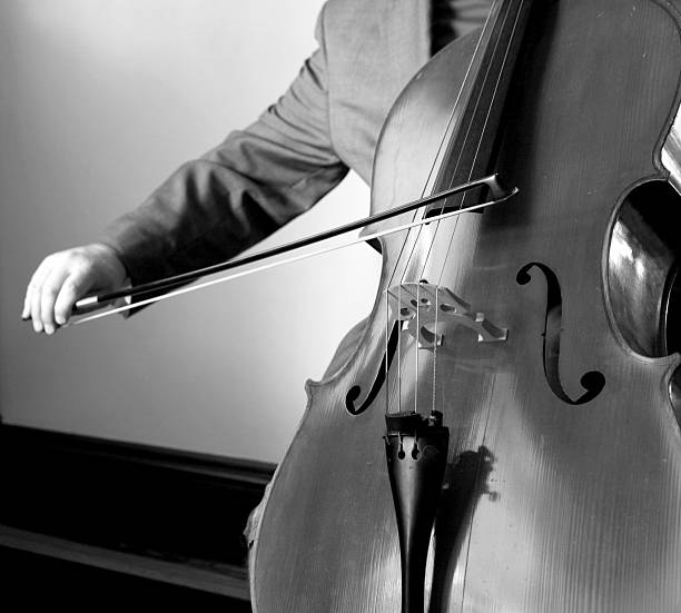 Cellist in Black and White stock photo