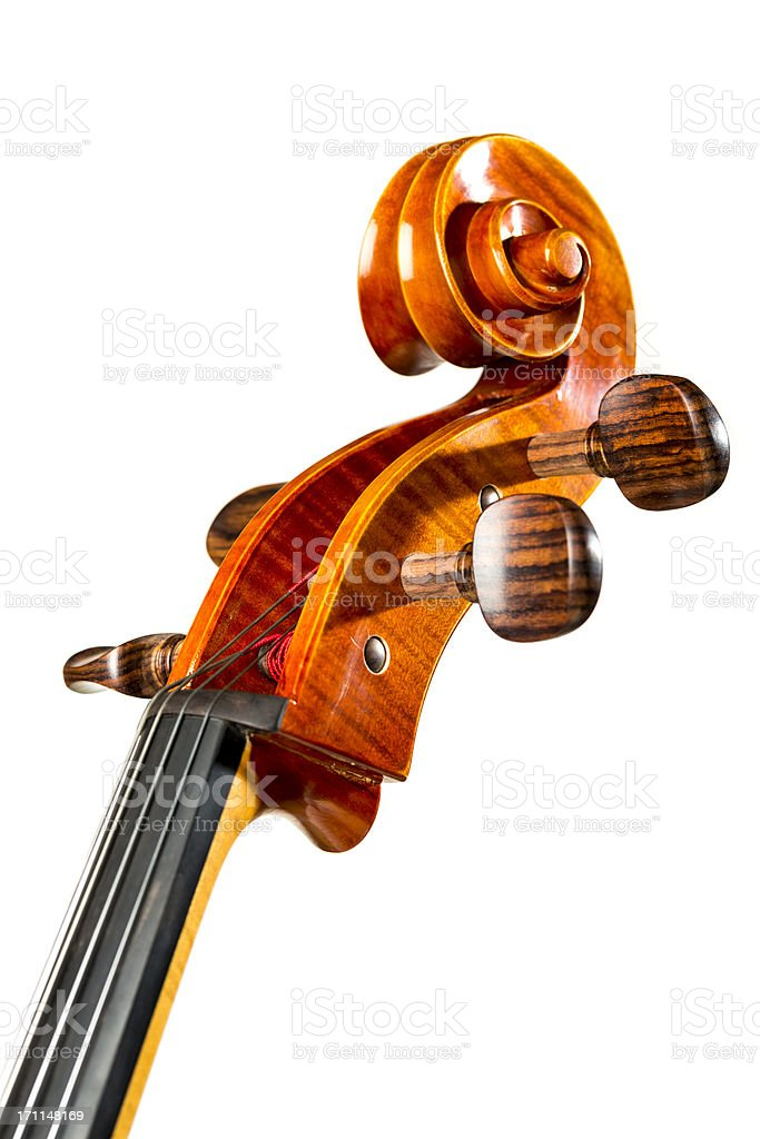 Cello close up royalty-free stock photo