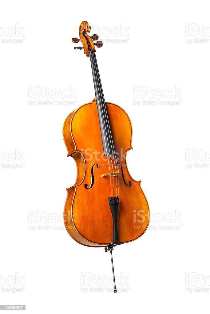 Cello full body shot stock photo