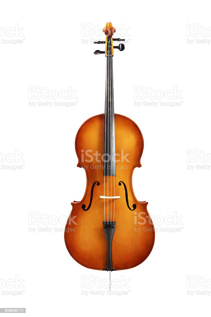 cello isolated on white – Foto