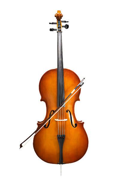 cello isolated on wihte – Foto