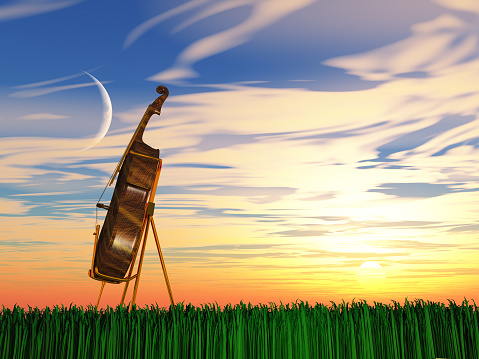 istock Cello on grass at sunrise or sunset 1160631143