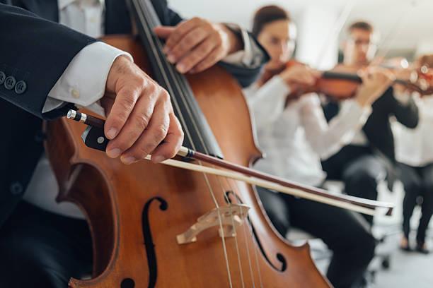 cello player's hands close up - philharmonie stock-fotos und bilder