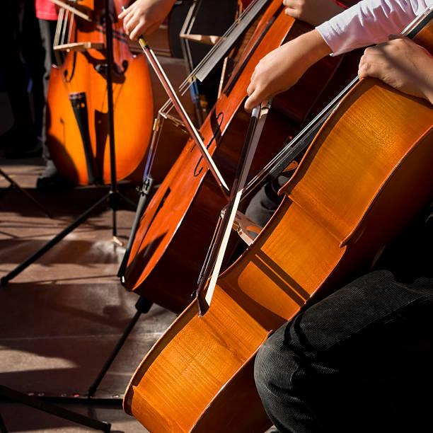 Cello Spieler – Foto