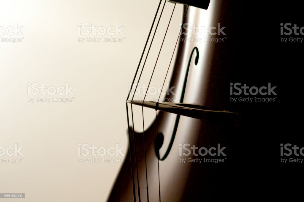 Cello strings stock photo