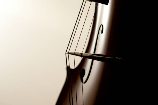 Cello strings Close up of a cello and its strings string instrument stock pictures, royalty-free photos & images